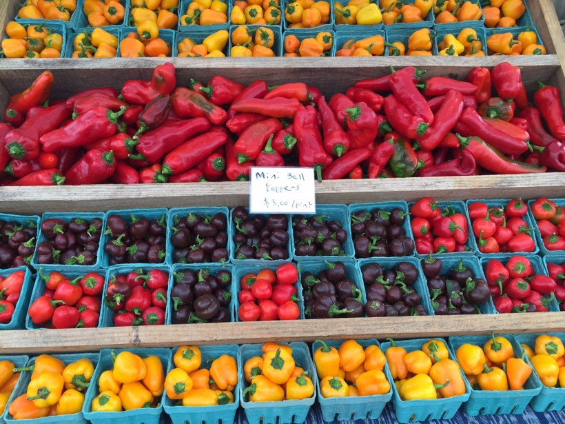On Sunday afternoon, we trekked to Briar Chapel (Chapel Hill) for PepperFest. Who knew peppers were so versatile? Tent after tent - chefs from every fab restaurant in the Triangle - whipped up delicious amuse bouche size samples for us to taste.